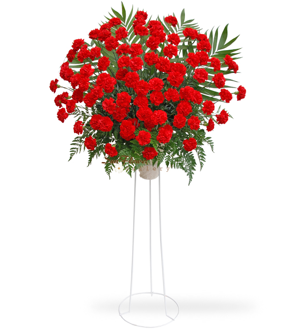 100 Red Carnation Standing Spray