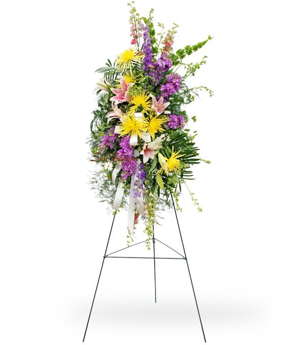Colorful Tribute