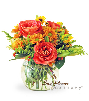 Warm Sensation arrangement by Sun Flower Gallery of Glenview