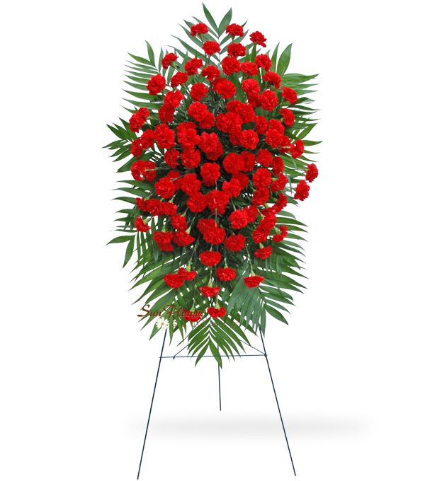 100 Red Carnation Easel Spray